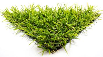 דשא סינתטי מדגם אואזיס