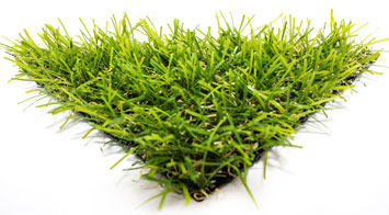 דשא סינטטי מדגם אואזיס