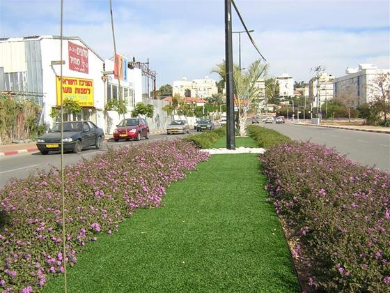 דשא סינטטי לרשויות